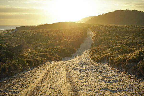 Photograph - Early Morning Light On 4wd Sand Track by Keiran Lusk