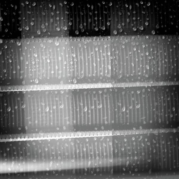 Digital Art - Early Morning Rain by Denise Beverly