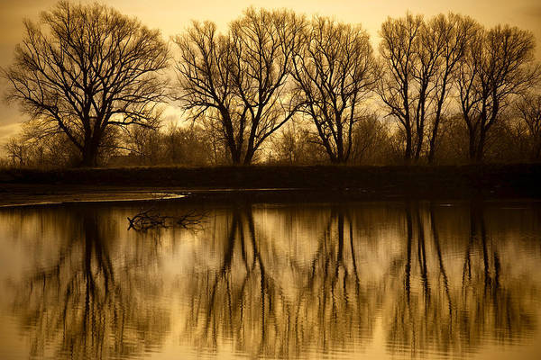 Early Morning Reflections Art Print