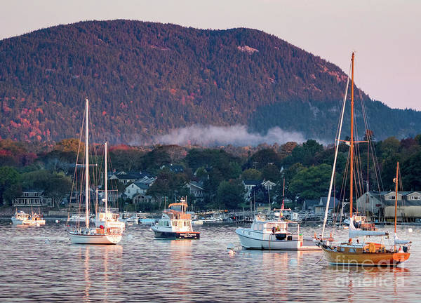 Photograph - Early Morning, Southwest Harbor, Maine #32416 by John Bald