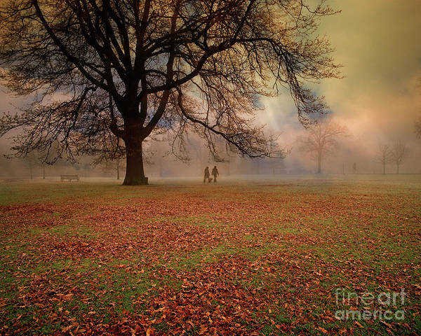 Photograph - Early Morning In The Park by Edmund Nagele