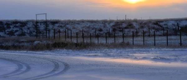 Photograph - Early Morning Winter by Amanda Smith