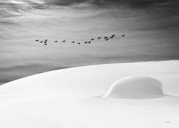Photograph - Early Snow by Bob Orsillo