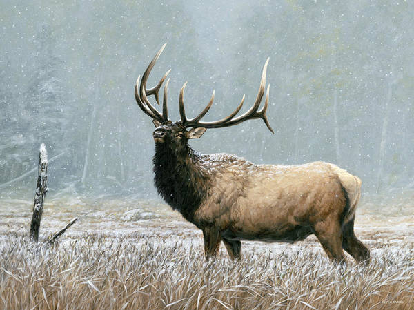 Painting - Early Snow by Peter Eades