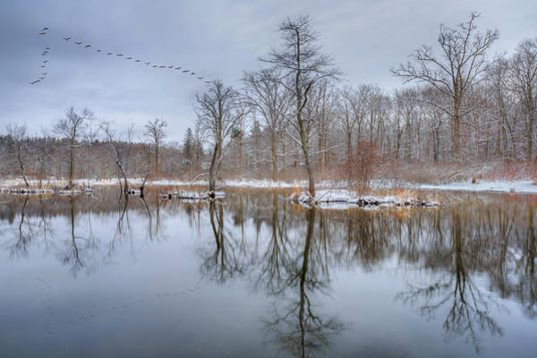 Photograph - Early Spring In New England by Bill Wakeley