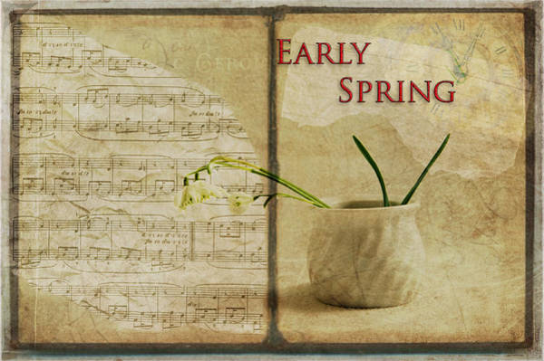 Photograph - Early Spring by Randi Grace Nilsberg