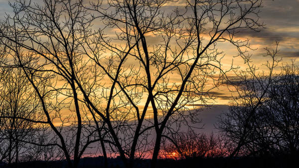 Photograph - Early Spring Sunrise by Randy Scherkenbach