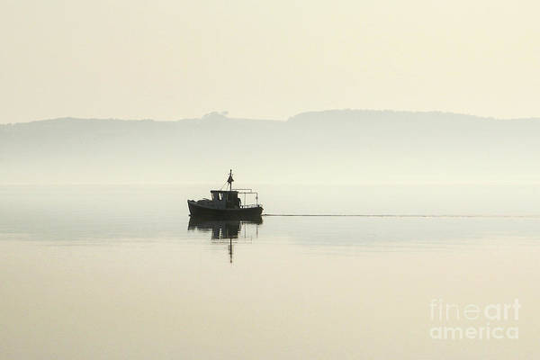 Photograph - Early Summer Morning 3 by Kim Lessel