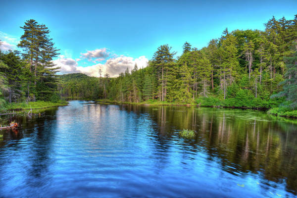 Photograph - Early Summer On Nicks Lake by David Patterson