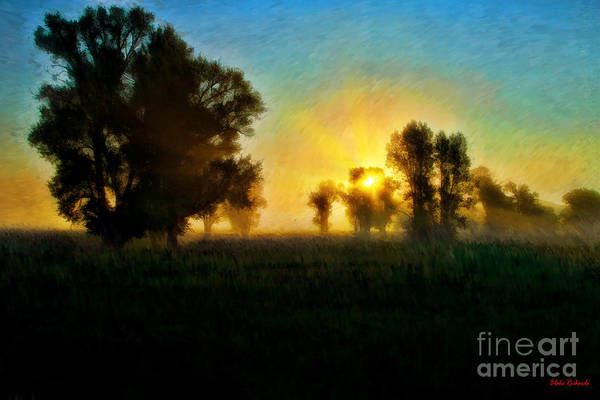 Photograph - Early Yellow Morning  by Blake Richards