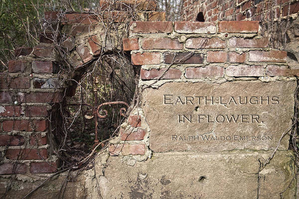 Bricks Photograph - Earth Laughs In Flower Wall by Tom Mc Nemar
