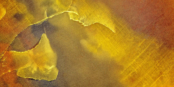 Photograph - Earth Portrait 001-120 by David Waldrop