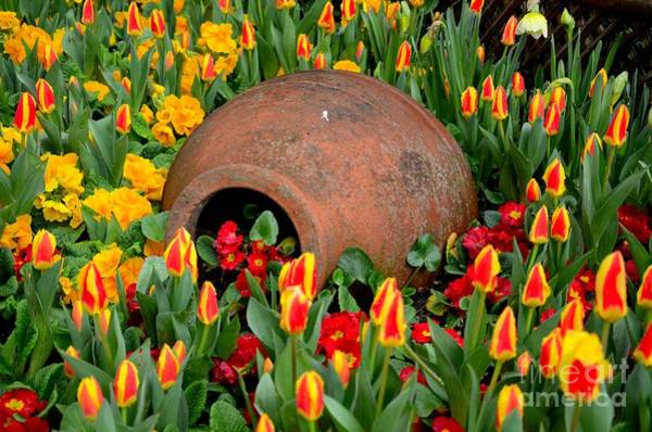 Photograph - Earth Pottery Vessel With Red Flowers With Yellow And Green Plants by Imran Ahmed