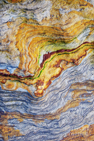 Wall Art - Photograph - Earth Stone by Tim Gainey