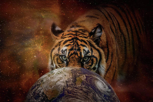 Photograph - Earth Surveyor Tiger Art by Jai Johnson