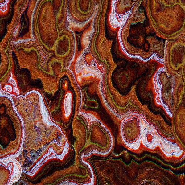 Digital Art -  Earth Tones Abstract  by OLena Art Brand