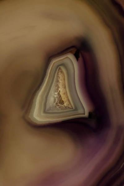 Photograph - Earth Treasures - Brown Agate by Jaroslaw Blaminsky