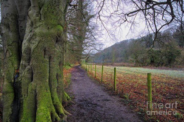 Abbey Photograph - Easby Walks by Smart Aviation