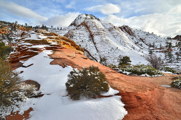 Photograph - East Canyon Road In Zion by Ray Mathis