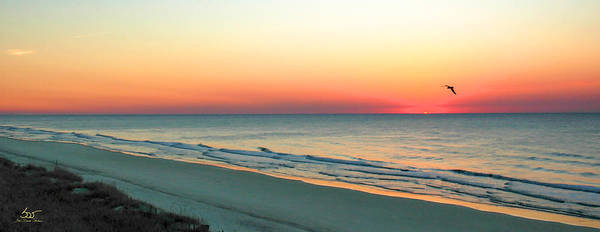 Photograph - East Coast Sunrise by Sam Davis Johnson