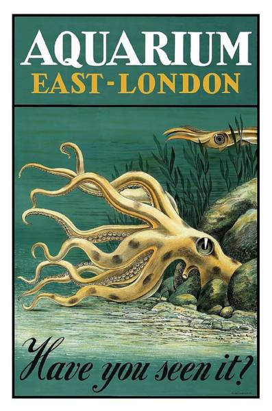 Fauna Digital Art - East London Aquarium Octopus Vintage World Travel Poster by Retro Graphics
