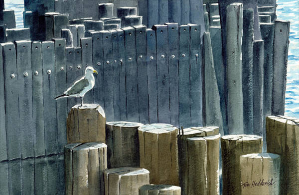 Wall Art - Painting - East River Gull by Tom Hedderich