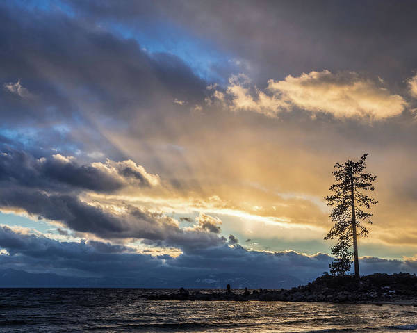 Photograph - East Shore Lake Tahoe by Martin Gollery