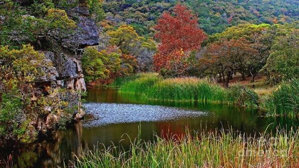 Wall Art - Photograph - East Trail Pond At Lost Maples by Michael Tidwell