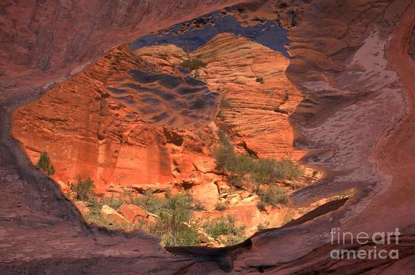 Photograph - East Zion Abstract Reflections by Adam Jewell