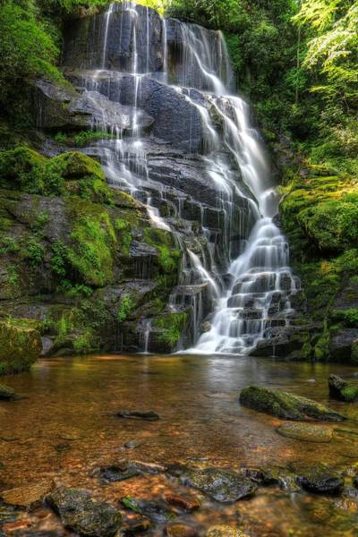 Photograph - Eastatoe Falls In Spring by Carol Montoya