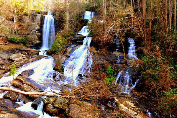 Wall Art - Photograph - Eastatoe Falls/twin Falls by Lisa Wooten