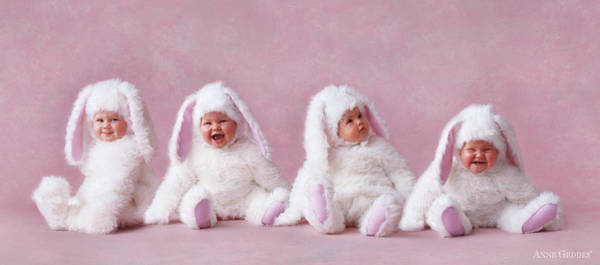 Bunny Rabbit Wall Art - Photograph - Easter Bunnies by Anne Geddes