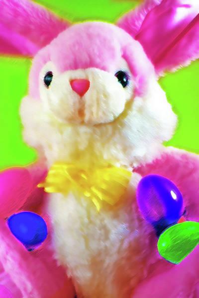 Fun Wall Art - Photograph - Easter Bunny 2 by Steve Ohlsen