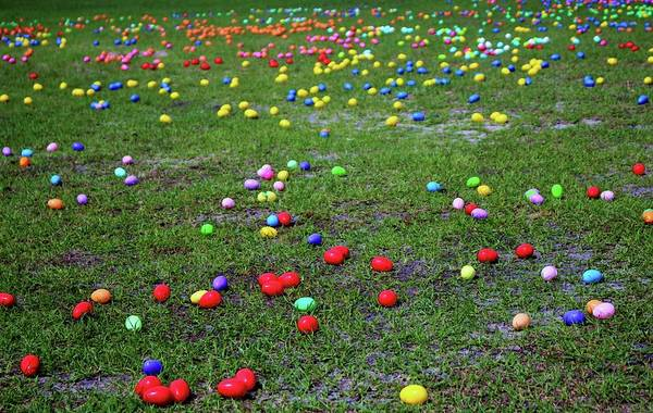 Photograph - Easter Egg Hunt by Cynthia Guinn
