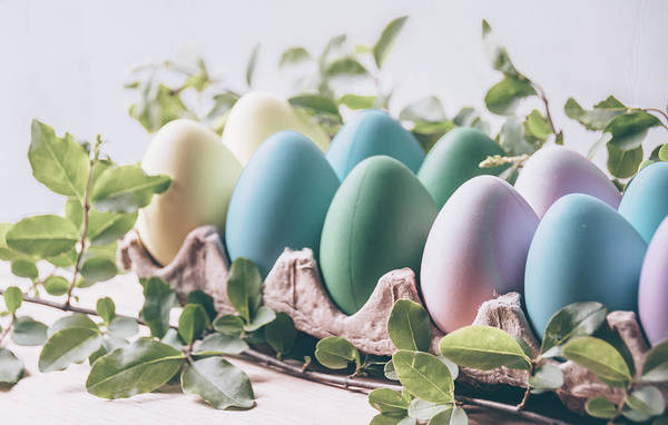 Photograph - Easter Eggs 23 by Andrea Anderegg