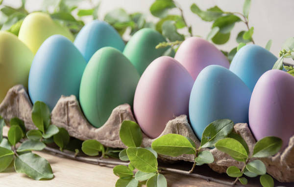 Photograph - Easter Eggs 24 by Andrea Anderegg