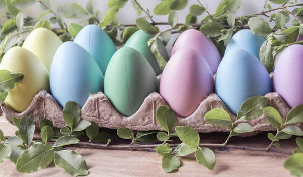 Photograph - Easter Eggs 26 by Andrea Anderegg
