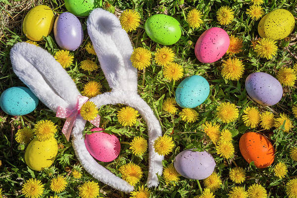 Photograph - Easter Eggs And Bunny Ears by Teri Virbickis
