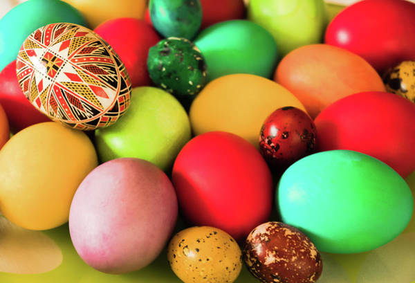 Photograph - Easter Eggs by Cristina Stefan