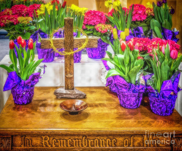 Photograph - Easter Flowers by Nick Zelinsky
