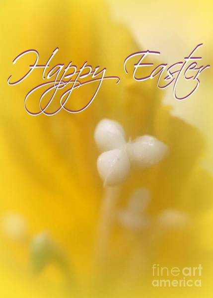 Photograph - Easter Yellow by Jenny Revitz Soper