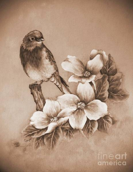 Eastern Bluebird Painting - Eastern Bluebird And Dogwood - Tint by Cindy Treger