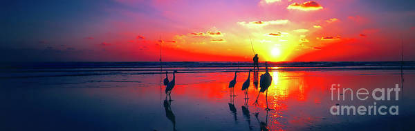 Photograph - Eastern Florida Surf Fishing At Dawn Birds   by Tom Jelen