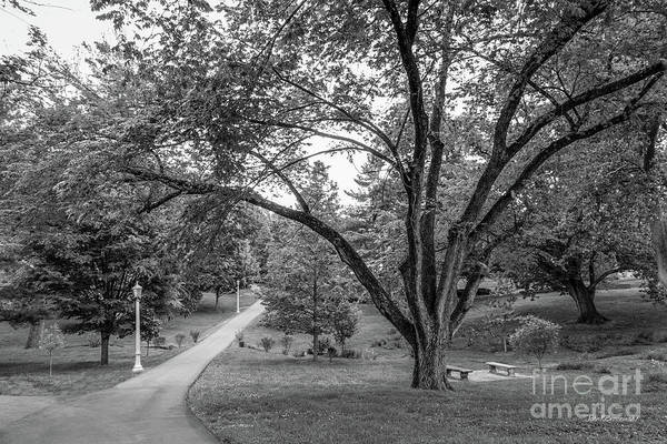 Photograph - Eastern Kentucky University The Ravine by University Icons