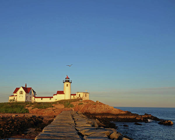 Photograph - Eastern Point Lighthouse Gloucester Ma At Sunset by Toby McGuire