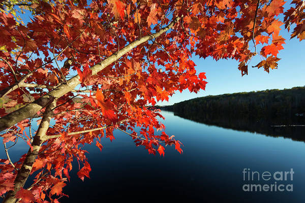 Photograph - Eastman Pond Grantham New Hampshire October by Edward Fielding