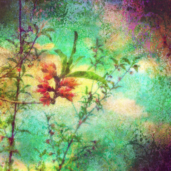 Orchard Digital Art - Easy Like Sunday Morning by Colleen Taylor