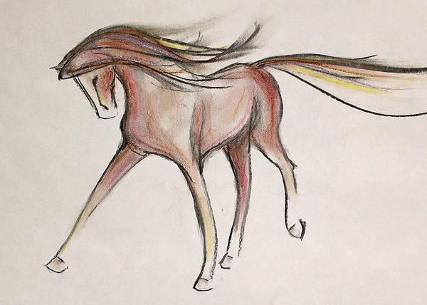 Warmbloods Drawing - Easy Walker by Jennifer Fosgate