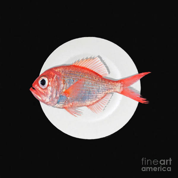 Photograph - Eat Fish Blk by Wingsdomain Art and Photography