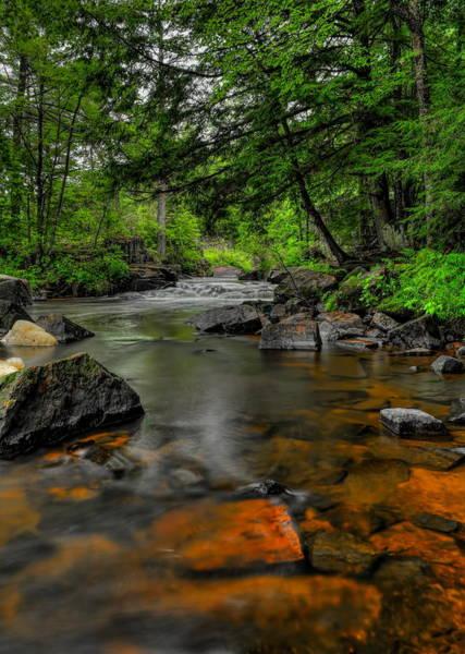 Photograph - Eau Claire Dells Colored Rocks by Dale Kauzlaric